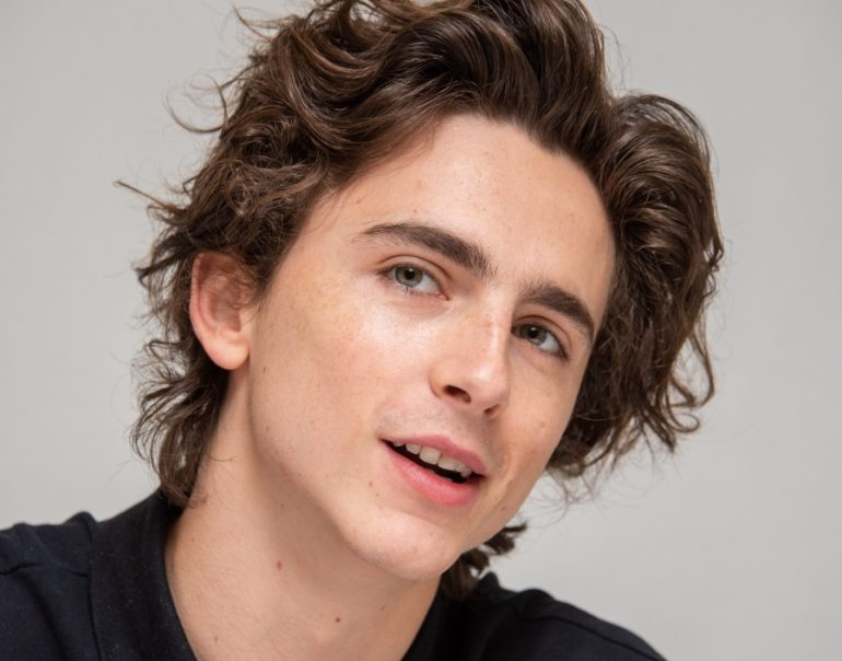 Timothée Chamalet - Foto Getty Images