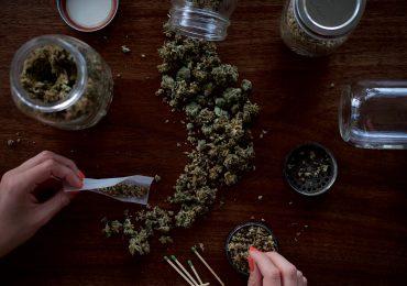 Aceite de marihuana Foto: wesley gibbs unsplash