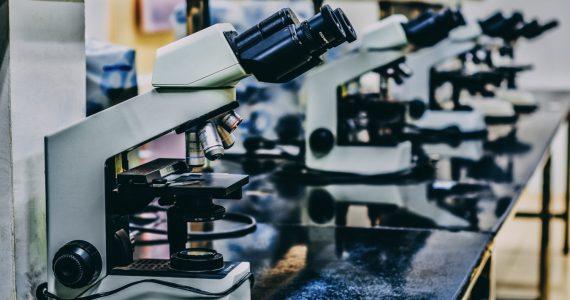 moléculas que almacenan información genética - unsplash