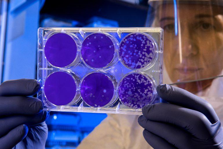 coronavirus italia cdc-unsplash
