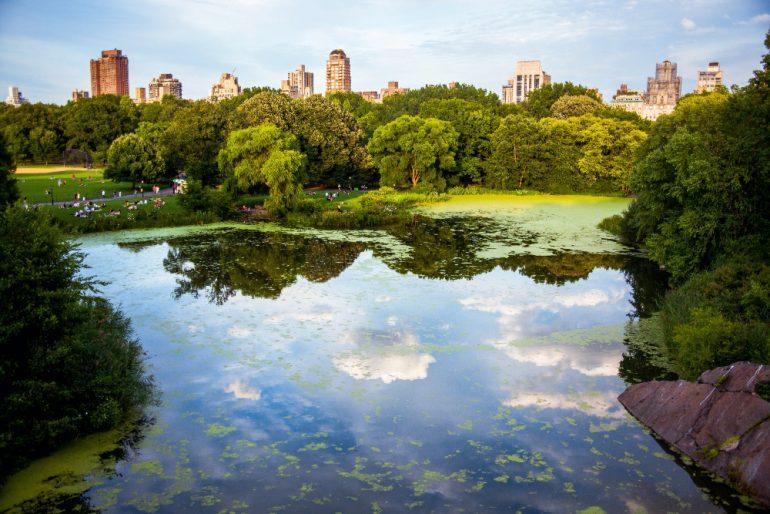 New York parques cementerios hector-arguello-canals-unsplash