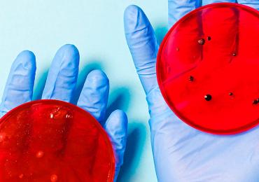 Suman 857 personas muertas por coronavirus en México