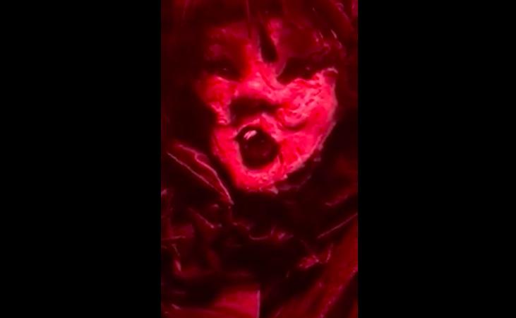 Genera pánico el terrorífico video que muestra muñeca en museo