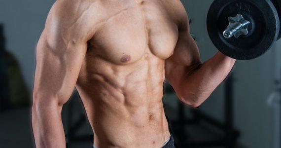 Como crecer tus músculos según hechos científicos