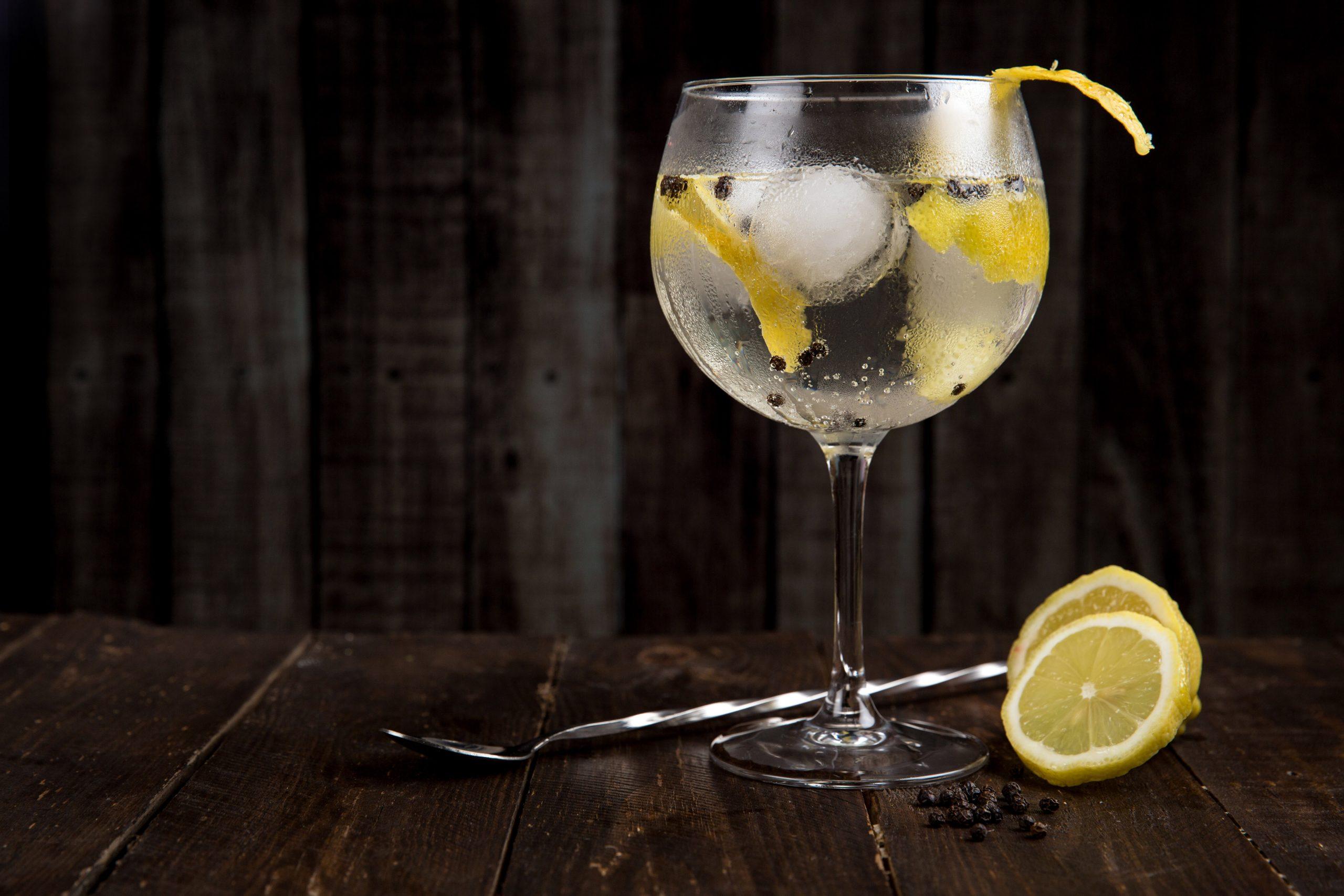 bebida gin