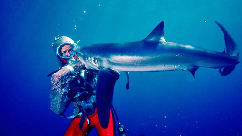 Películas Festival Sundance 2021 PLaying with sharks