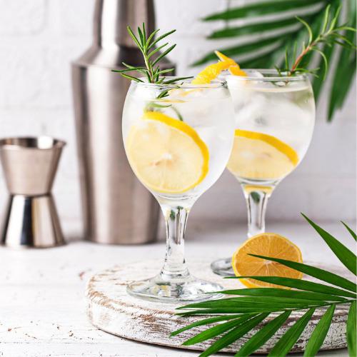Con qué se hace el gin tonic: ginebra