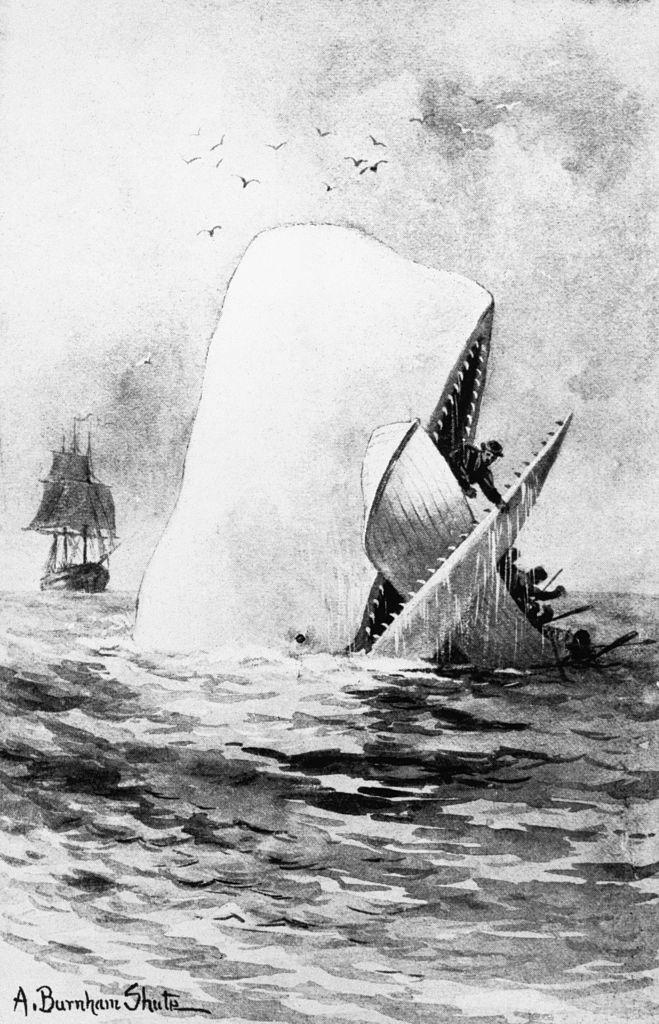 Ilustración de 'Moby Dick' de Herman Melville