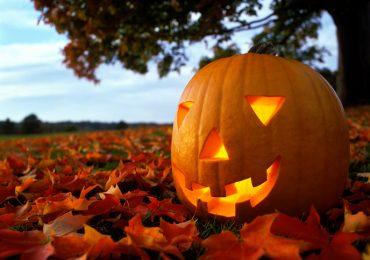 como tallar una calabaza de halloween